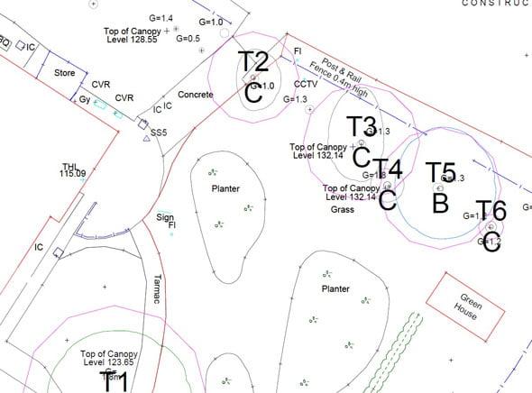 BS5837 Constraints Plan