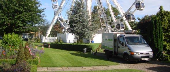 maintenanceand tree pruning